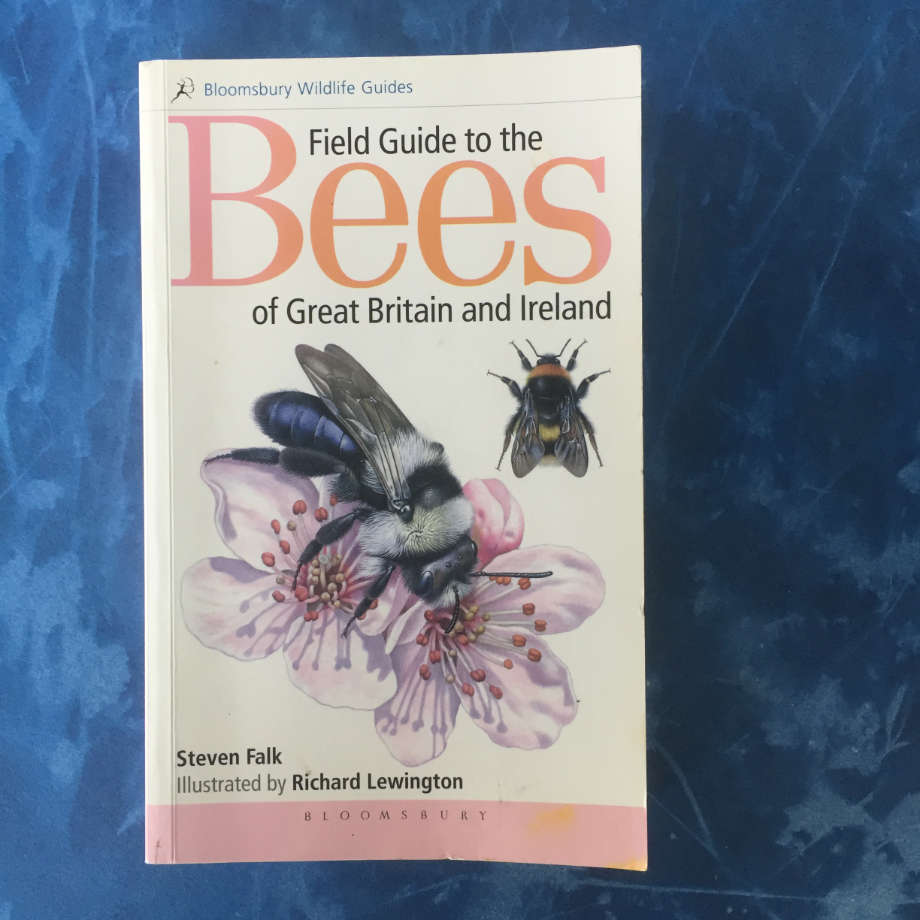 book cover field guide to bees