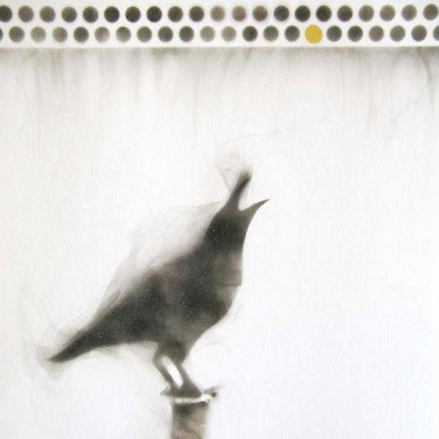 crow on post beak open silhouette