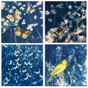 butterfly, moths, bee, bird vintage image on cyanotype background