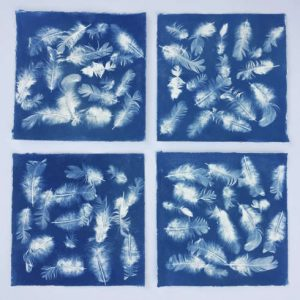 sixty seven white feathers on a blue background