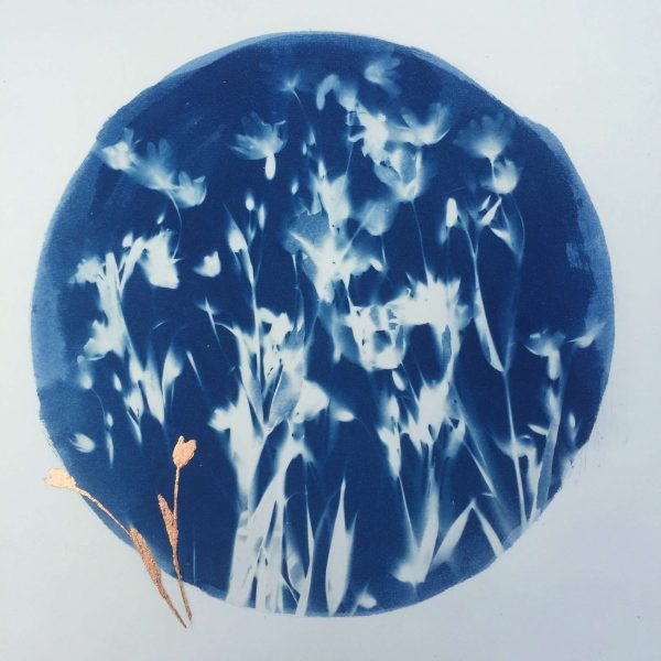 wild flowers blue gold